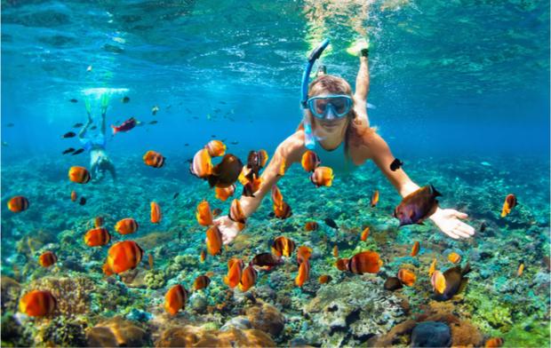 cách bơi lặn dưới nước